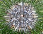 Pebble art-Land art from Hungary by tamas kanya