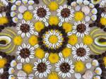 natural art.mandala by tamas kanya