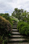 Stairs-Stock (2)
