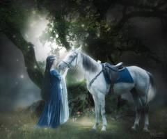 Fairy Tale by Mocris