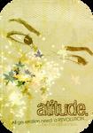 Atittude