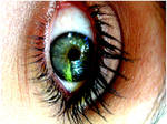 Hello-Green Eyes