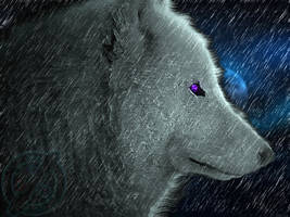 white Wolf and moon by impraziel