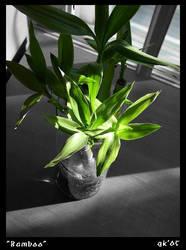 Bamboo Plant by midSMACKDABdle