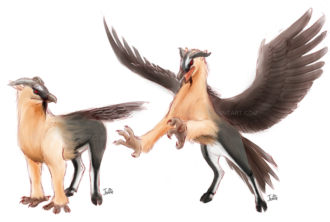 Bearded Vulture Hippogriff by BlazeTBW on DeviantArt