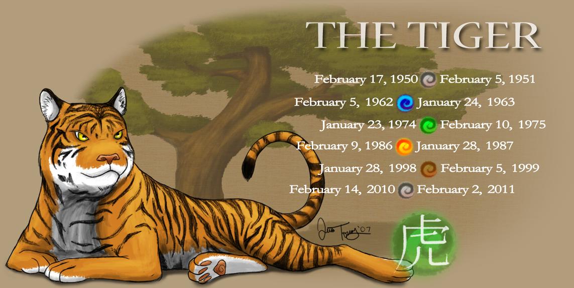 Year of the Tiger by BlazeTBW on DeviantArt