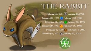 Year of the Rabbit by BlazeTBW