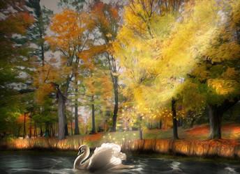 The Last Swan by hallbe