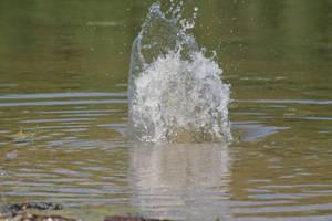 Water splash - 4 by Seductive-Stock