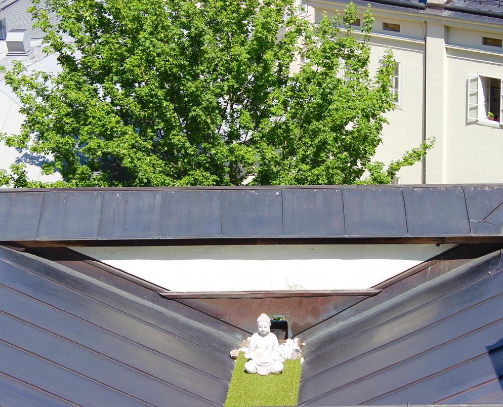 roof karma by WhoAreYou1978