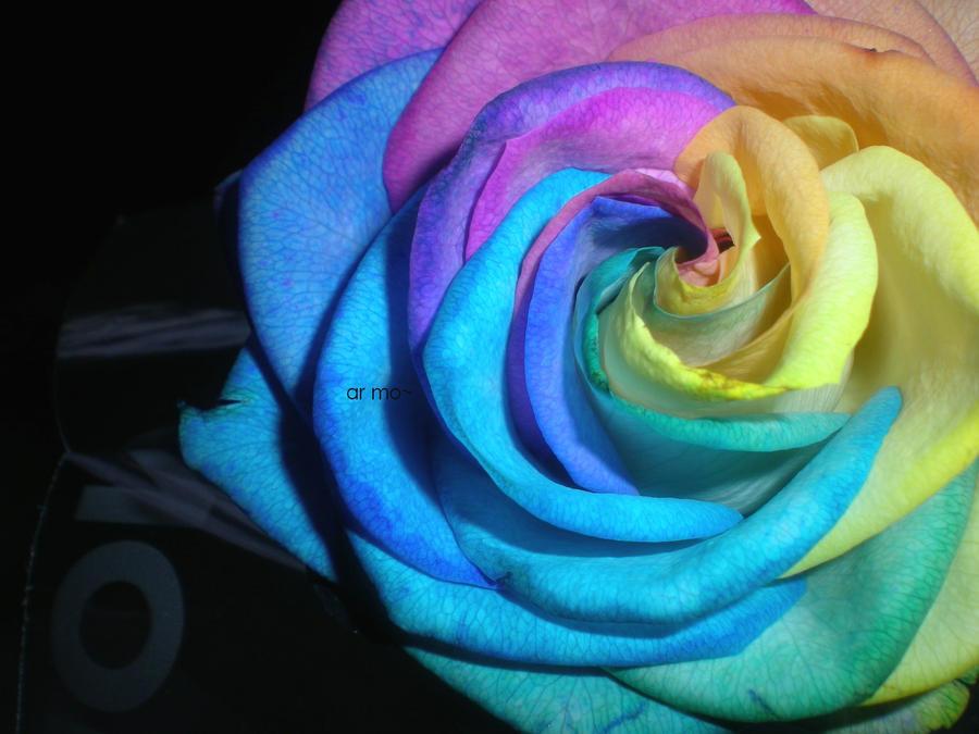 Beautiful poisonous flower by malice hyperactive on deviantart beautiful poisonous flower by malice hyperactive mightylinksfo