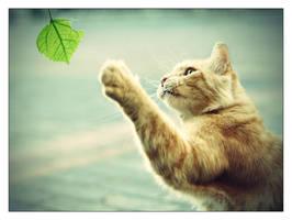 Reaching... by ranmor