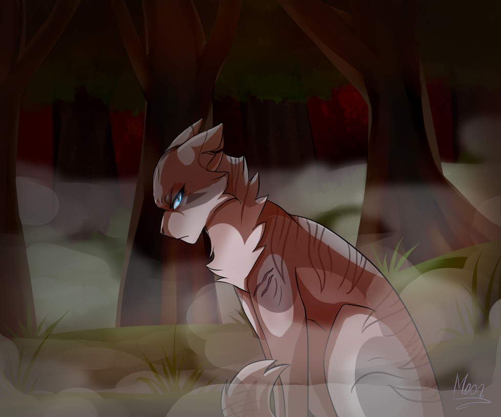 Images Of Warrior Cats The Dark Forest