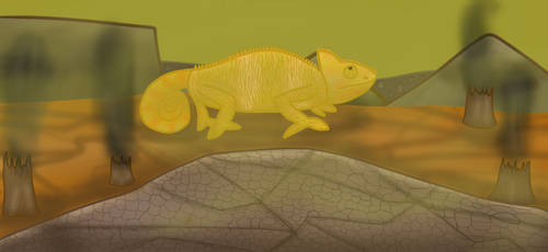 Solar System Challenge: Venus Chameleon