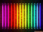80's Neons by Narodny-Geroy