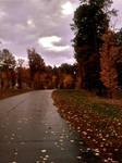 Rainny Fall