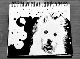 #21 Dog