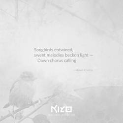 Dawn Chorus by Kiyo-Poetry