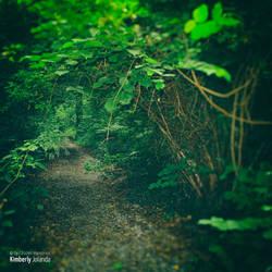 Green Discoveries by KimberlyJolanda