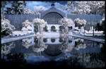 Midnight Palace -IR-
