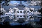 Midnight Palace -IR-