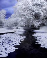 Arboretum Pond -03- by 32tsunami
