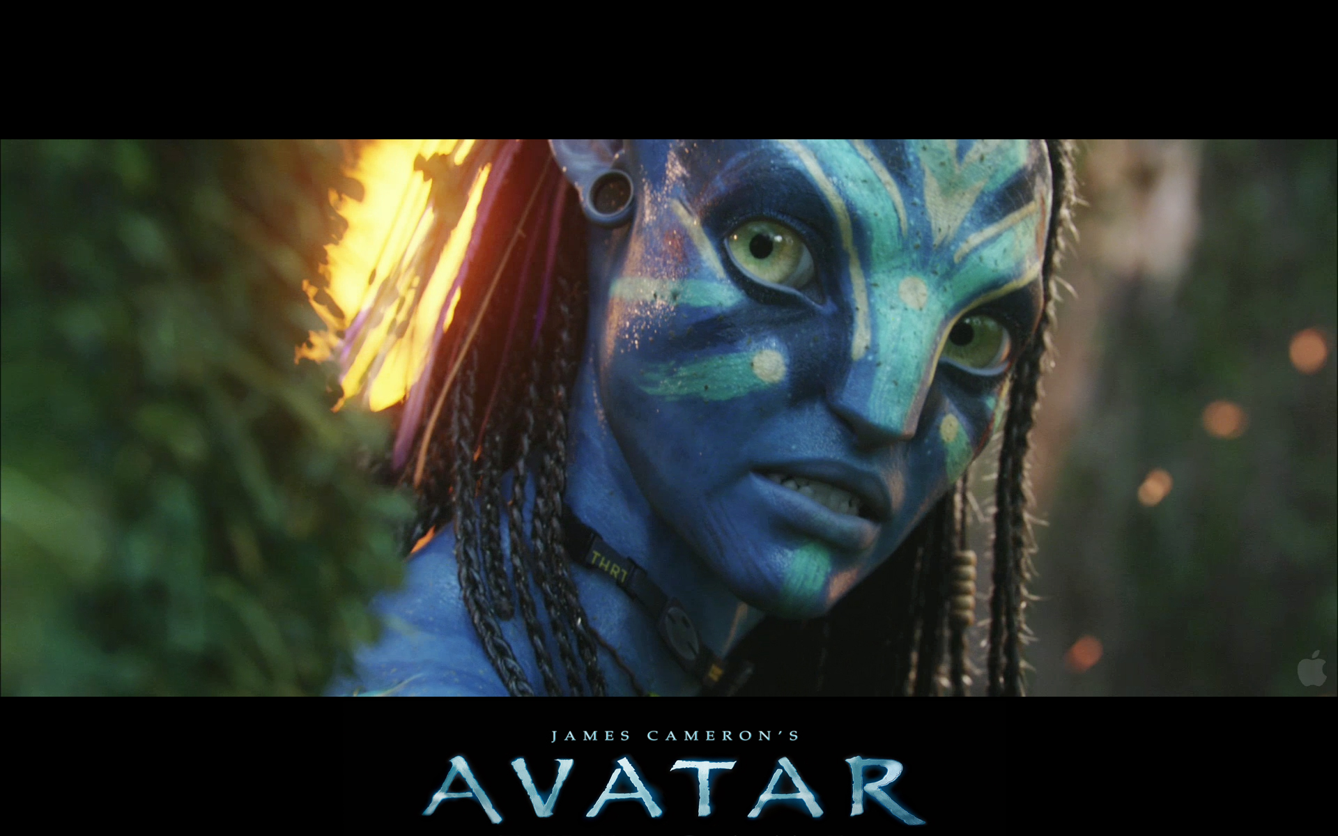 Neytiri Avatar wallpaper by alonSanchez on DeviantArt