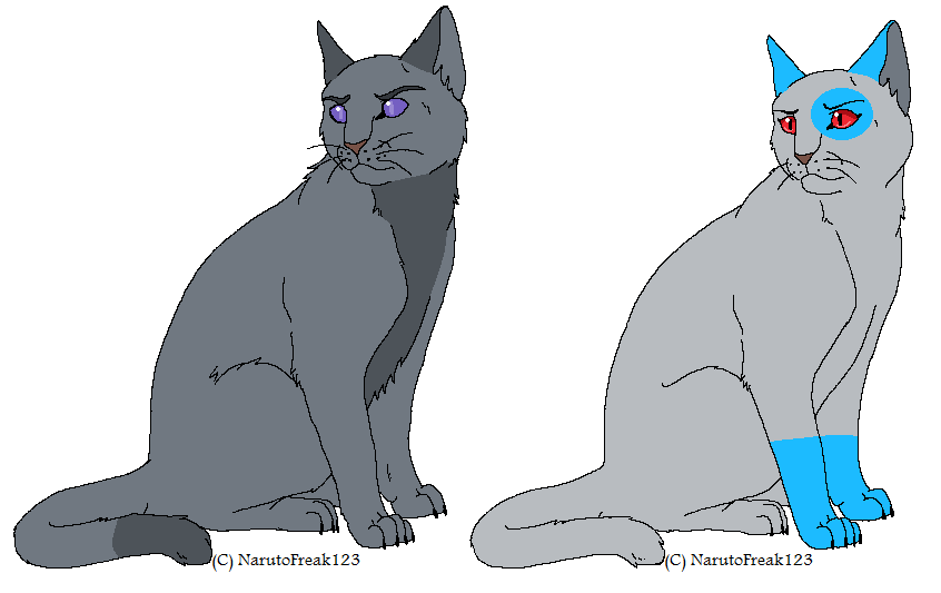 Warrior Cats Graypelt