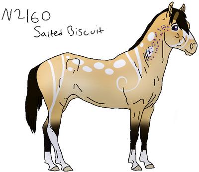 N2160 Salted Biscuit Padro by akeena7