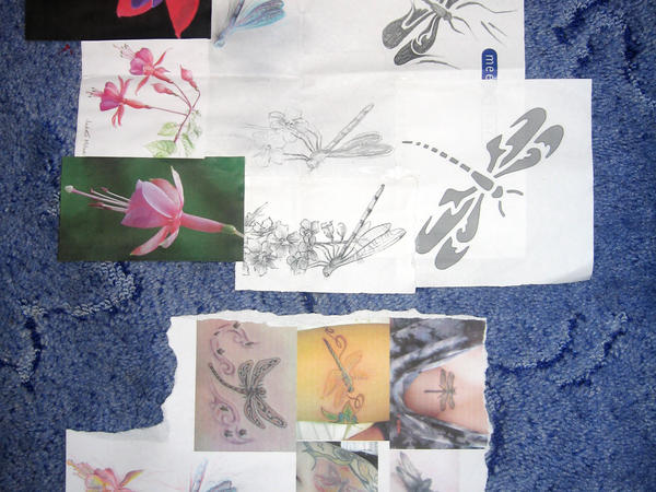 Dragonfly and fuschia research - dragonfly tattoo