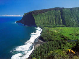 Maui Wowie by puddlz
