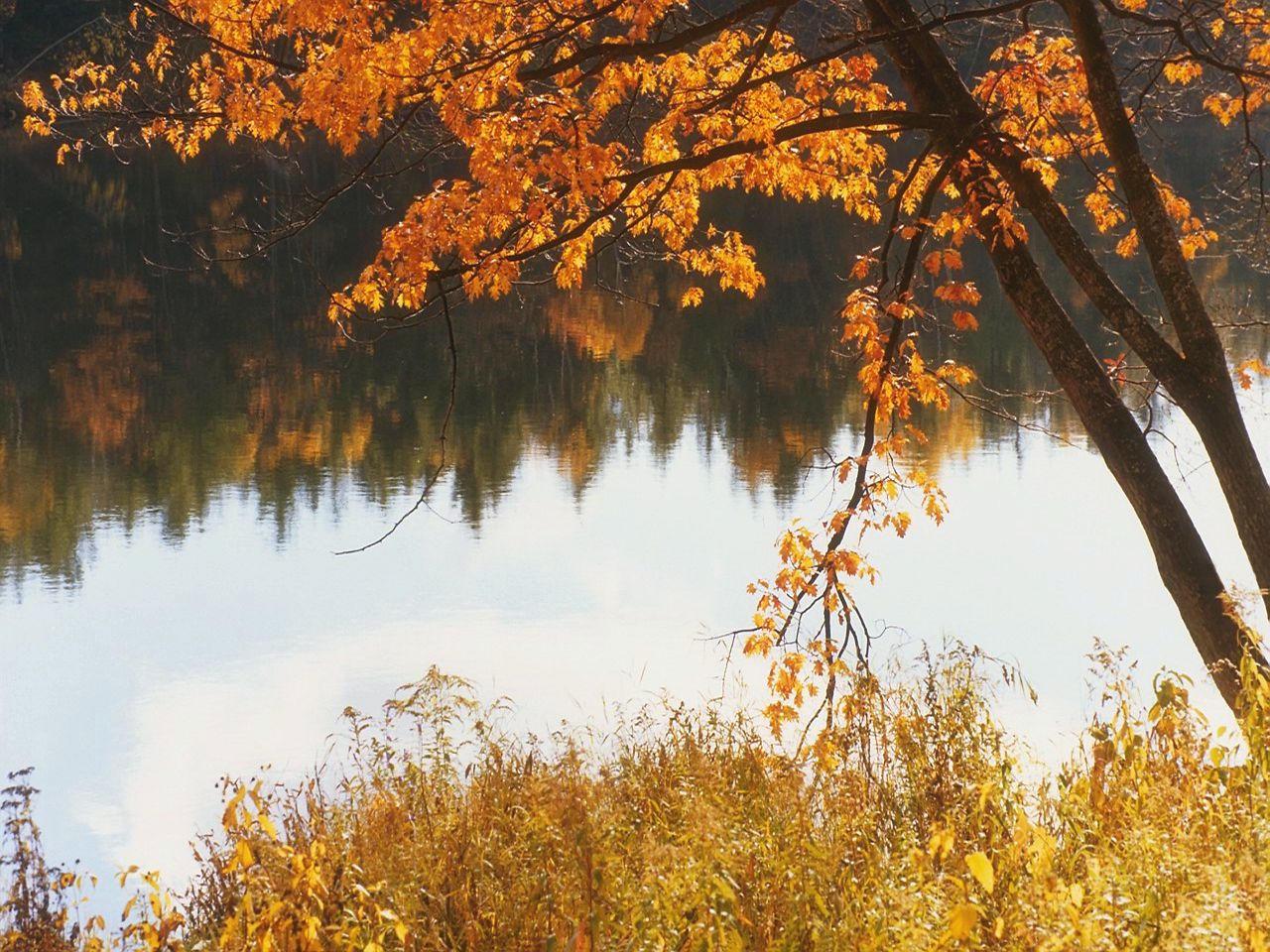 Fall lake by puddlz