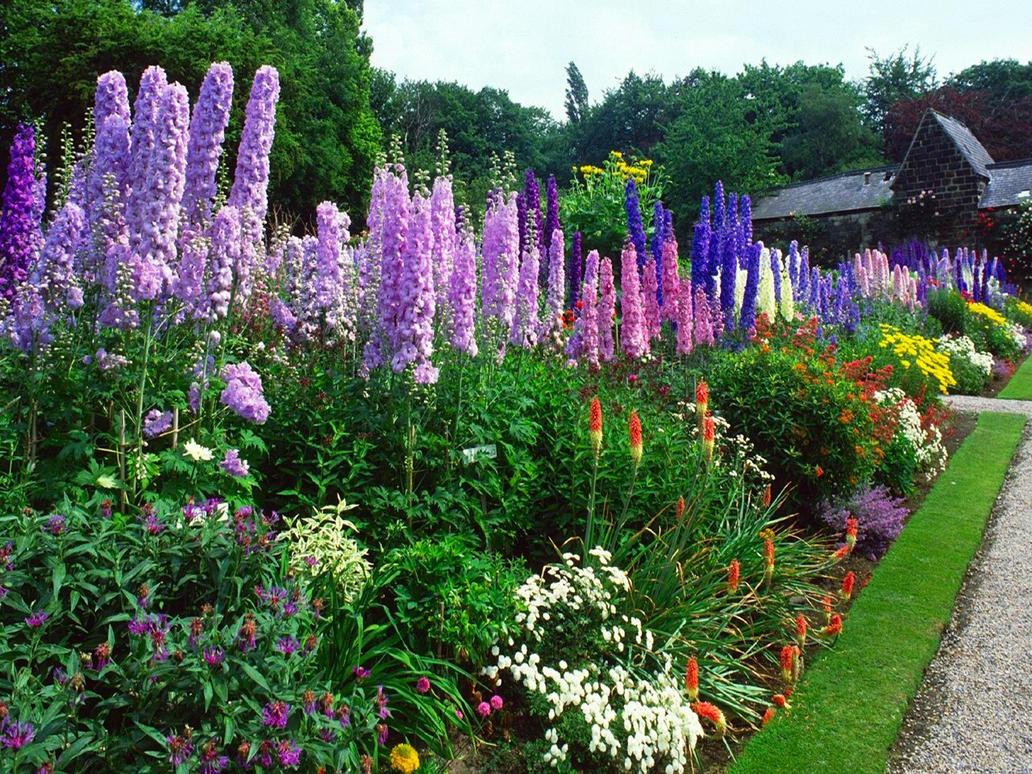 Fioli gardens 002 by puddlz