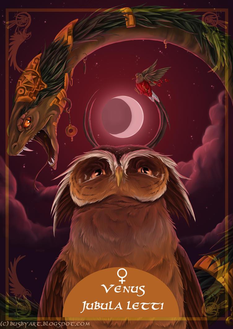 solar owls venus by busbyart