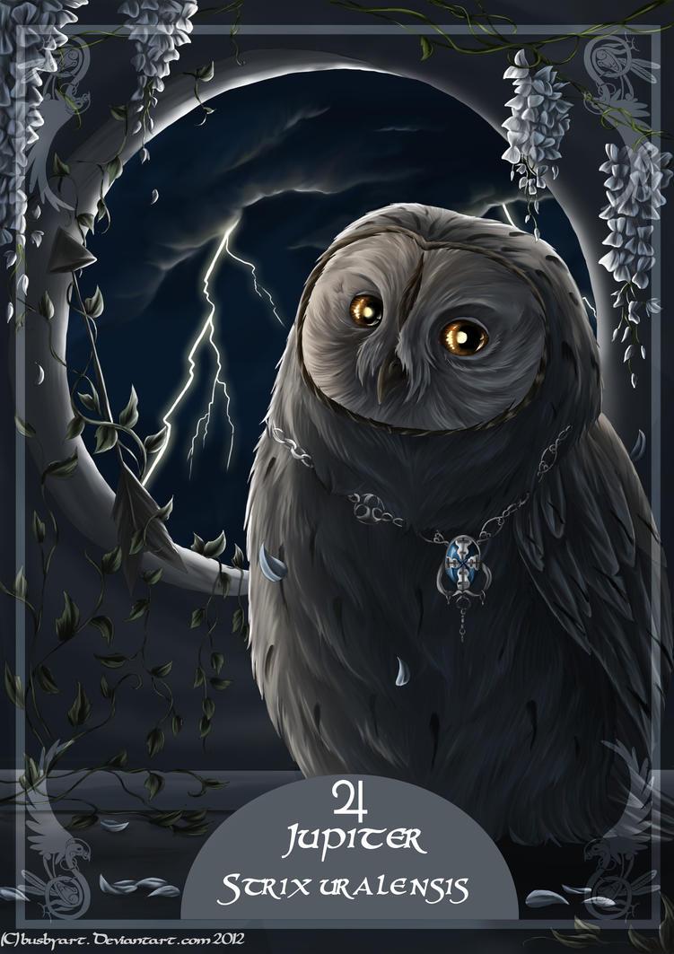 solar owls jupiter by busbyart