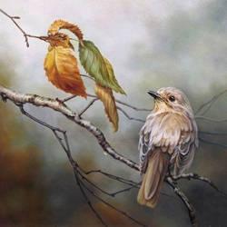 birdleaf