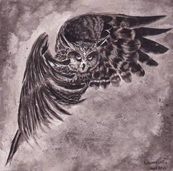 Owl by Avalonne65