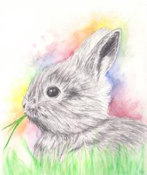 A Rabbit by Avalonne65
