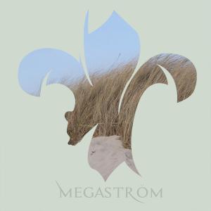 Megastroem's Profile Picture