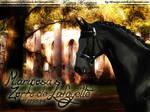 M.ariposa's Zorro de Lafayette