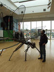 Giant Dragonfly