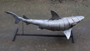 Black Tip Reef Shark by HubcapCreatures