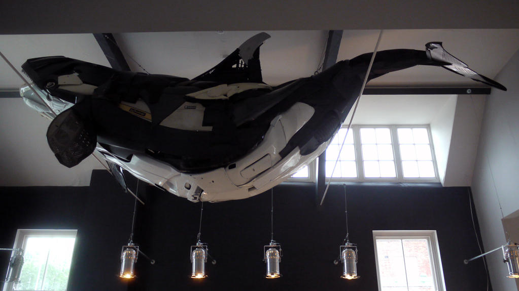 Orca (Killer Whale) by HubcapCreatures