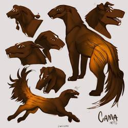Cama Sketchpage