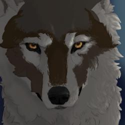 Quick Study (Wolf) by B-Blue-e
