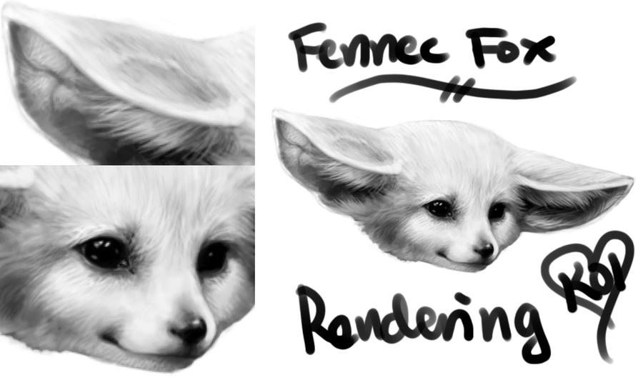 Fennec fox rendering by toxicoxygen on deviantart - Pagina da colorare fennec fox ...