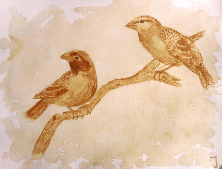 Birds. by Iulia-Oprinesc