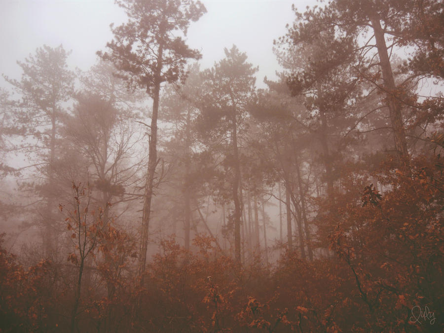 Solitude by Iulia-Oprinesc