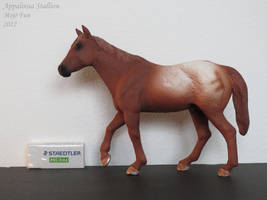 Collection Images: Appaloosa Stallion by Mojo Fun by CarolaFunder