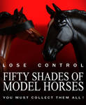 Fifty Shades Of Model Horses